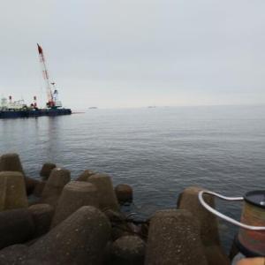 高砂港のキス釣り-3