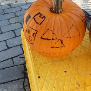 切ってないかぼちゃ