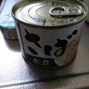メスティン飯(鯖缶飯)