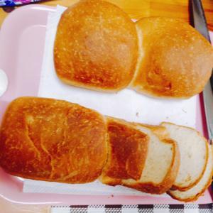 ふわふわ焼きたてパン♪( ´▽`)