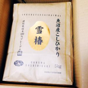 魚沼産こしひかりの雪椿♪( ´▽`)