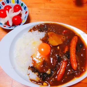 朝はチーズすじ肉カレー♪( ´▽`)