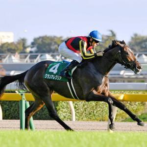 【朝日杯FS】前日本命予定馬は意外なあの馬!?~ターコイズS等展望