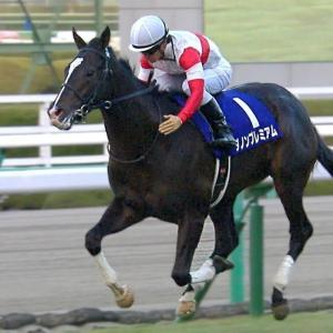 【朝日杯FS】データ分析~本命候補は意外なあの馬!?