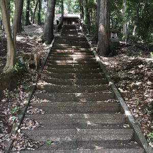 厳島神社とトウキョウサンショウウオ  東大和市蔵敷
