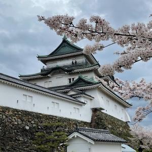 和歌山城と郵便保護銃