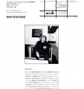 4266 ホワイトストーン・ギャラリー(中央区銀座6-4-16):ミズテツオ展