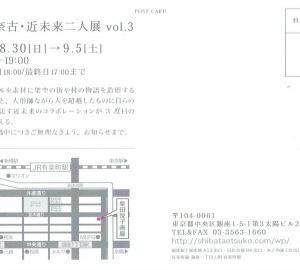 4300 柴田悦子画廊(中央区銀座1-5):大坪奈古/近未来 二人展 vol.3・2