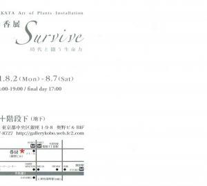 4640 巷房2・階段下(中央区銀座1-9):坂田彩香展