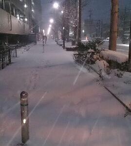 【ここは東京】2月8日(土)東京は寒波の影響で猛吹雪、翌日雪だるま発見【スマホデータレスキュー】