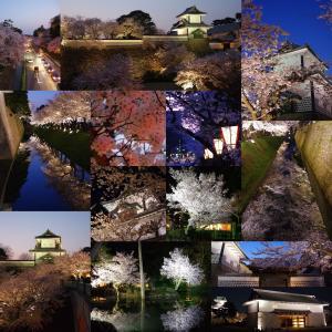 Instagramベスト9ふう、金澤桜百景2020年(その3)