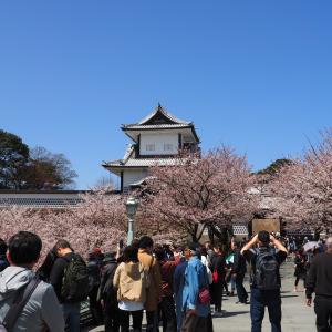 2019年「石川門のお花見」
