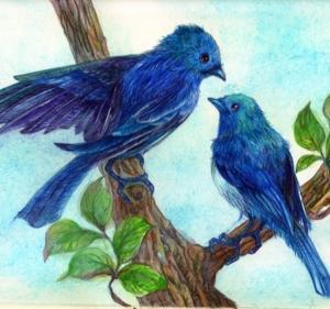 Blue Birds 2  -home- 此処に家を作ろうか?