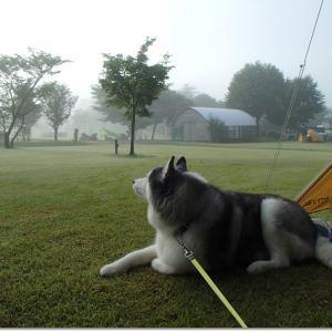 蒜山キャンプ Leçon 2