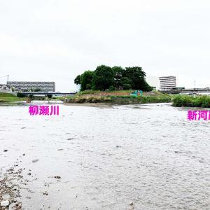 柳瀬川を歩く・3…追求するのは野火止用水だけでなかった