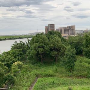 十条から荒川目指し散策・4…なぜ再開発した街は画一的に見える?
