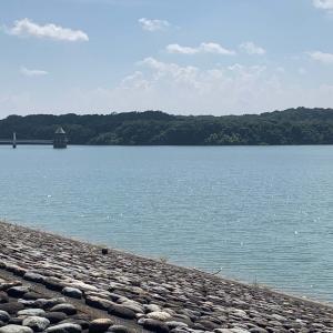 柳瀬川を歩く・番外発見編…最上流部はここだった