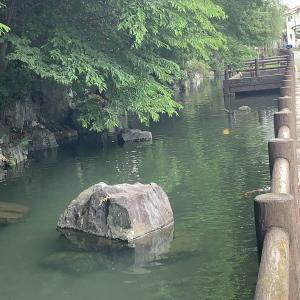 拝島を散歩する・2「拝島丘陵の湧水」