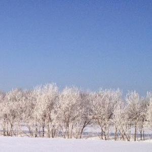 タイ人と一緒に冬の北海道を体験して気づいたこと