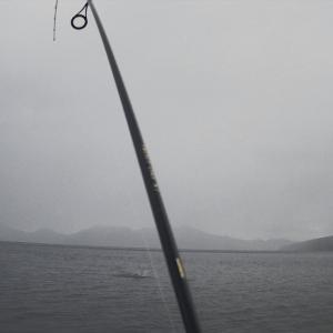 支笏湖で、モンスタークラス?