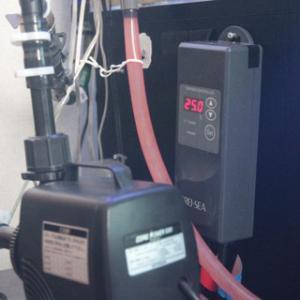 水温コントローラー導入&照明の配置換え