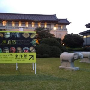 東京国立博物館 東洋館と本館
