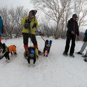 この冬初めての雪遊びへ④~野沢温泉スキー場でスノーシュー