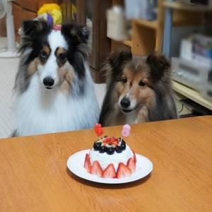 お誕生日ケーキは大変とありがとう