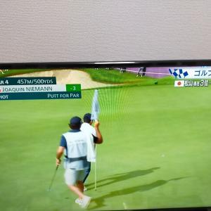 今度のラウンドは千葉県の美しいゴルフ場