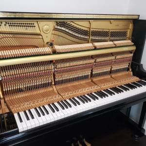 SAIピアノとかしてます