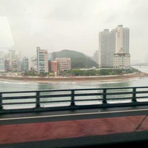 『釜山』慶州で世界文化遺産 そして金運にあやかろうと・・・