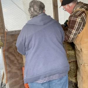 隣人と週末プロジェクト・チキンハウスの大掃除