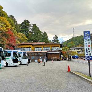湖東三山と永観堂ツアー2日目♪【後半】