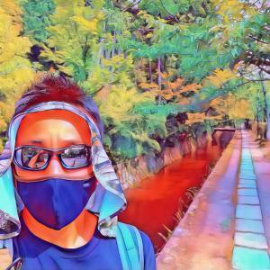 【京都観光のいま】哲学の道の現在の様子。
