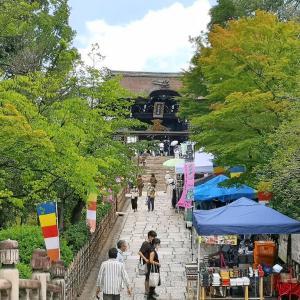 京都の新スポットと拝観無料の寺社めぐり♪