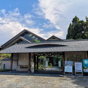 京都散歩・コース7【京都鉄道博物館・京都タワー】
