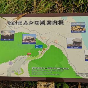 奄美諸島4島めぐりツアー2日目【後半】♪