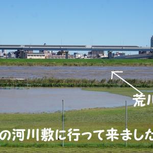 荒川河川敷。台風前・・。台風後・・