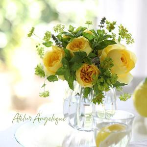 今年流行のイエローはお花だと取り入れやすい