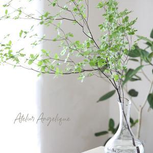 大きめな枝ものや花を入れるだけでスタイリッシュに飾れるIKEAの水差し