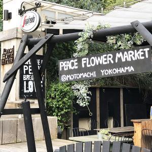 ペットと行ける花カフェ ピースフラワー マーケット 元町