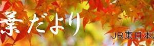 秋深く 群馬は紅葉真っ盛り