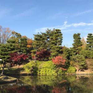 秋のお散歩♪③