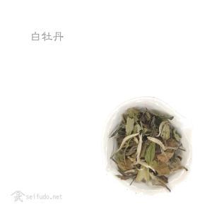 白茶 白牡丹
