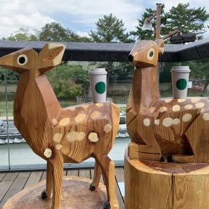 奈良の休憩スポット
