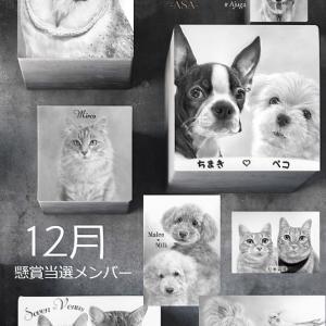 12月懸賞当選者 ☆ 作品