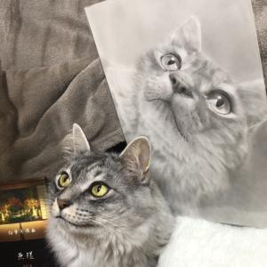 肖像画と記念撮影 2 ☆ミ