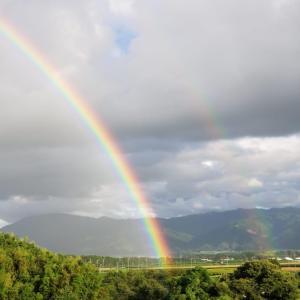 希望の虹になるといいな