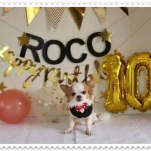 Roco 10歳のお誕生日ディナー🎂
