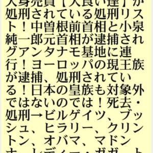 人身売買【人食い達】が処刑されている処刑リスト!小泉純一郎元首相と故中曽根前首相が逮捕されグアンタナモ基地に連行!ヨーロッパの現王族が逮捕、処刑されている!日本の皇族も対象外ではないのでは!